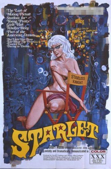 欧美早期成人电影海报组图