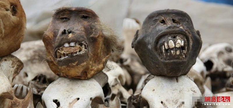 揭秘非洲恐怖巫术祭品市场